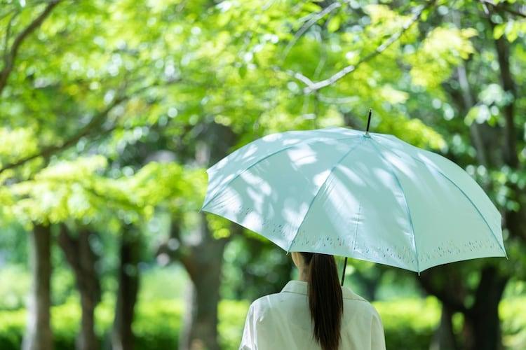 Q&A|日傘に関する疑問を解決!