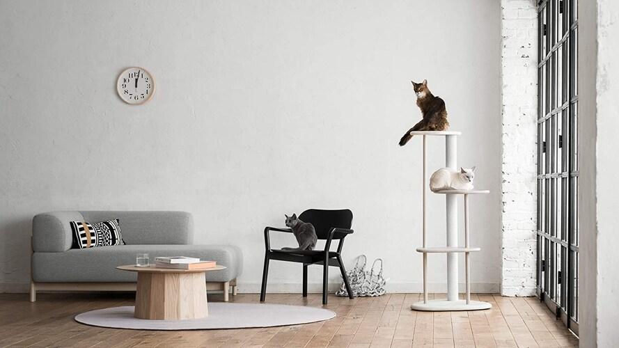 材質 おしゃれな木製も!猫ちゃんの快適さも要チェック