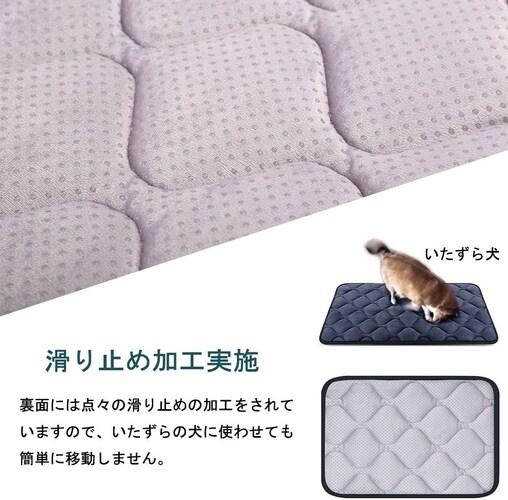 滑り止め 老犬用ベッドを探している方は要チェック!