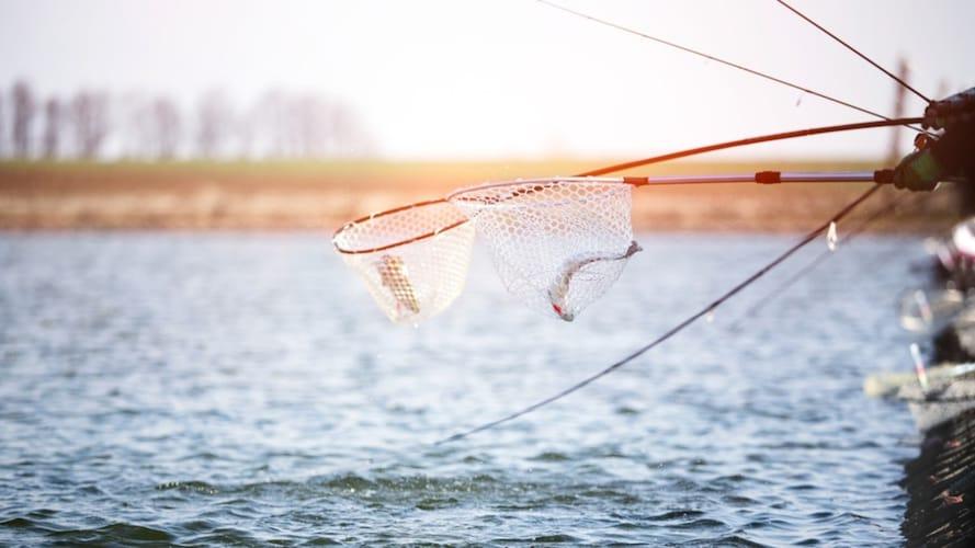 シャフトの長さ|釣りの種類や釣り場を考慮しよう!