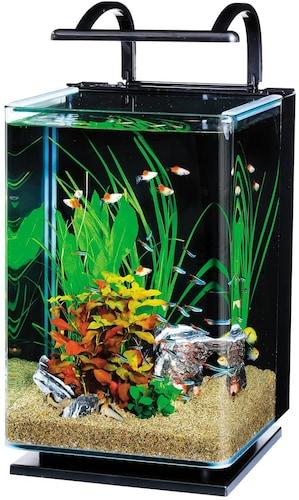 メダカ飼育用水槽のインテリア・ビオトープタイプ