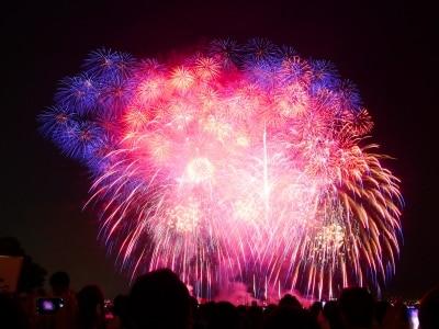 神奈川新聞花火大会、臨港パーク(協賛企業・コロワイド席)からの眺め。第2部「スカイシンフォニーinYOKOHAMAPresentedbyコロワイド」では、25000発超の花火が打ち上げられました(2015年8月4日撮影)