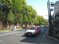 左側の緑が東京大学。右側には喫茶店や書店などが並んでいる。緑の濃さがよく分かる