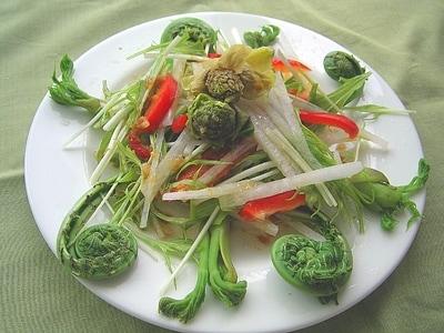 華やかな春の一皿 山菜サラダ