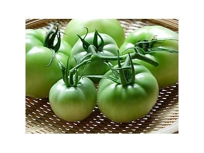 グリーントマトの浅漬け