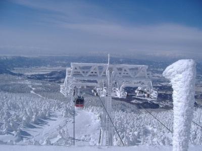 蔵王の樹氷(1)