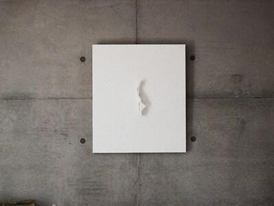 壁に架かる絵画・・・と思ったらティッシュ!