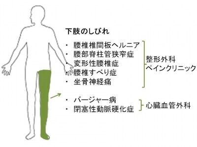 足のしびれ、原因、治療、足がしびれる