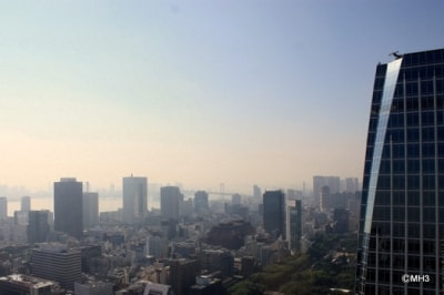 「愛宕グリーンヒルズフォレストタワー」屋上からレインボーブリッジ方を臨む