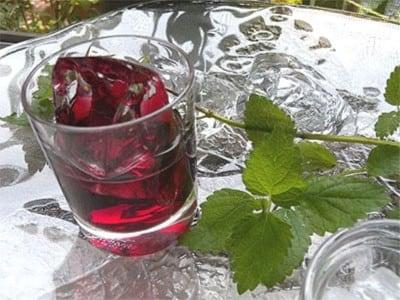 ブルーベリー酒の作り方!果実酒のおすすめレシピ