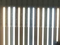直管形LEDランプの光色