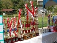 品評会で優勝した金魚の飼育者に贈られるトロフィー