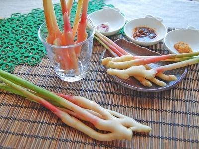 葉生姜(谷中生姜)の下ごしらえ・酢漬けなどの食べ方