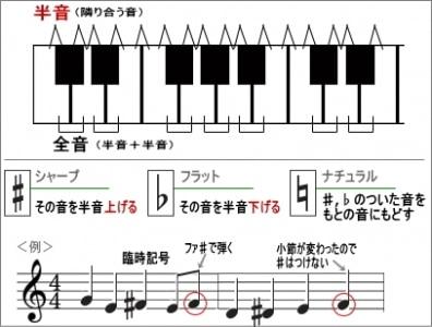 半音、全音の説明と臨時記号使用の例