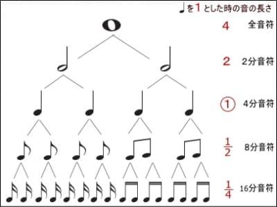 音符の種類と長さを説明した図