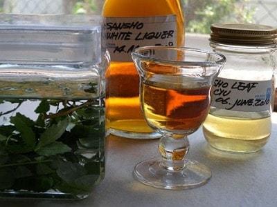 山椒酒のレシピ!山椒の葉を使った薬用酒を自宅で手作り