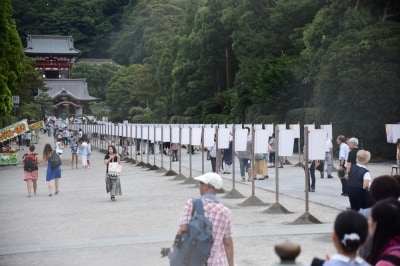 鶴岡八幡宮境内で開催される「ぼんぼり祭」