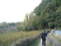 山の辺の道(2)