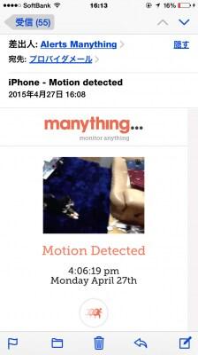 動きがあると、メールが届きます。その時の画像も添付されるので、すぐに状況を把握できます。