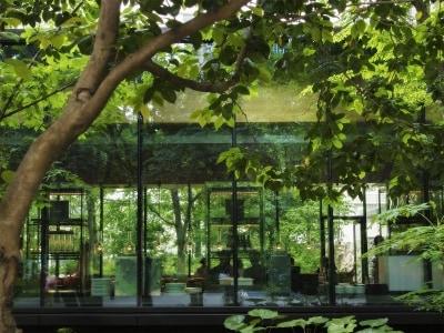 緑に包まれたカフェの外観。