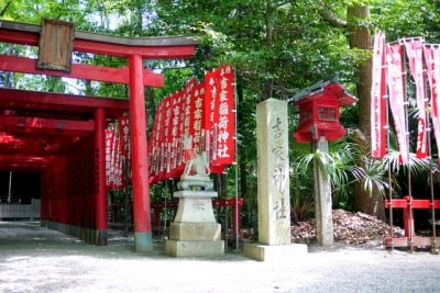 初午は稲荷神社のお祭りで、油揚げやいなり寿司などを供えます