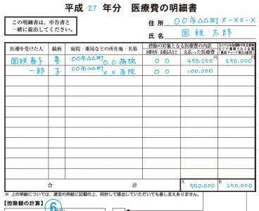 医療費の明細書には、医療を受けた人ごと、病院・薬局名ごとに医療費の小計を書く。領収書単位で書くより時短になってラク(画像は国税庁HPより)