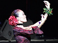 フラを踊るハルヨさん