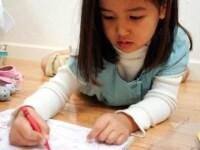 子どもに関する資格