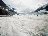 カナディアン・ロッキーのコロンビア大氷原