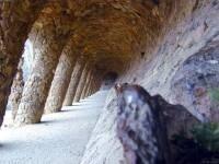 柱はやしの木がモチーフ。自然を取り入れたガウディらしい公園の一部。