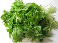 水菜を切る
