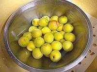 完熟梅を1時間ほど、水につける