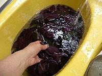 赤紫蘇の葉を洗い、汚れを取る