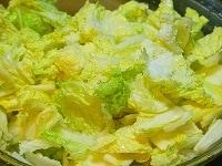 白菜に塩をふる