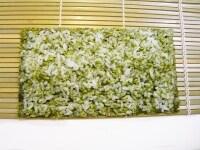 緑ご飯を全体に広げる