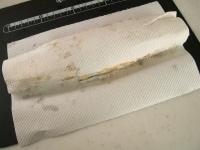 粗熱を取りペーパータオルでくるんで成形する