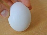 卵のお尻に軽くひびを入れる