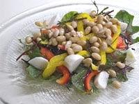 野菜と組み合わせサラダに
