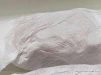 ペーパータオルで包んで冷蔵庫に一晩入れる