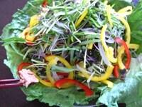 野菜を盛り付ける