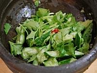 タレと食べやすい長さに切った香菜を入れて混ぜ合わせる。