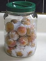 煮沸消毒をした容器に梅と合わせ塩を入れる