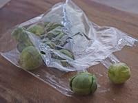 芽キャベツの保存方法