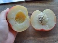 桃を切り分けてから皮を剥く方法2