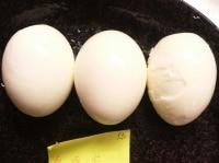 3種の卵をゆでて比べる
