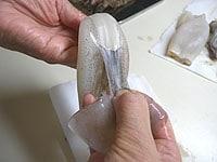 胴と耳の間に指を入れ、薄皮をむく
